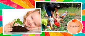 Растения которые могут выращивать дети